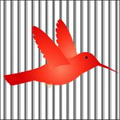 bird in cage / bars vector