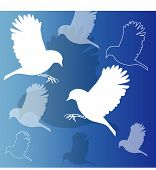 picture of caw  - stylized birds - JPG