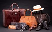 Crocodile leather products
