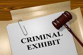 Criminal Exhibit Concept poster
