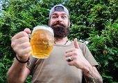 Thumbs Up To The Best Beer. Man Drinker Holding Beer Mug. Bearded Man Enjoy Drinking Beer On Nature. poster