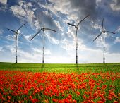 pic of wind-turbine  - red poppy field with wind turbine - JPG