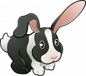 stock photo of white rabbit  - A vector illustration of a cute lovable bunny rabbit - JPG