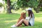 Asian Smilling Lifestyle Woman Playing And Happy With Golden Retriever Friendship Dog In Sunrise Out poster