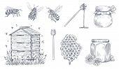 Honey Bees Engraving. Hand Drawn Beekeeping, Vintage Honey Farm And Honeyed Bee Pollen Vector Illust poster