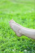 Female Bare Beautiful Legs Laying On Green Grass