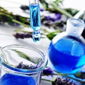 closeup of a pipette and a flask with flower essence and a pile of lavender flowers in the backgroun