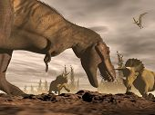 stock photo of tyrannosaurus  - One tyrannosaurus roaring at two triceratops dinosaurs in landscape with trees by brown night - JPG