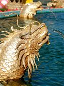 Sea dragon monster of Chinese legend