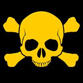 image of skull cross bones  - Yellow skull and cross - JPG