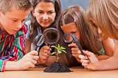 stock photo of professor  - Teacher and students looking at a plant through magnifier - JPG