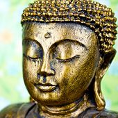 pic of siddhartha  - golden buddha face close up isolated on white - JPG
