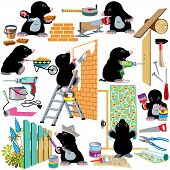 pic of mole  - set with cartoon mole working home renovation - JPG