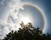 picture of halo  - Sun with circular rainbow sun halo on sly - JPG