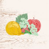 image of lithographic  - Fruits apple pear grapes strawberries as engraving vintage vector - JPG