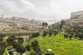 stock photo of gethsemane  - Kidron Valley - JPG