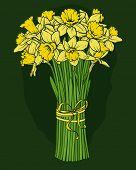 pic of daffodils  - Yellow daffodils bouquet - JPG