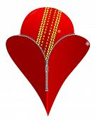 stock photo of zipper  - A red heart with a zipper showing a red cricket ball rising from within - JPG