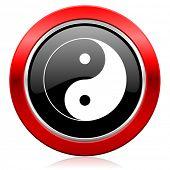 picture of ying-yang  - ying yang icon   - JPG