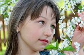 stock photo of ruddy-faced  - The ruddy girl with green eyes  smells a spring flowers - JPG