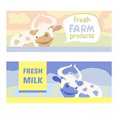 picture of cow  - Fresh farm products - JPG