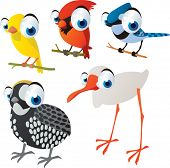 picture of cardinal-bird  - vector isolated cartoon cute animals set - JPG