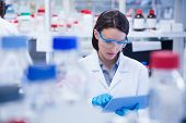 picture of biotechnology  - Chemist wearing safety glasses and using tablet pc in lab - JPG