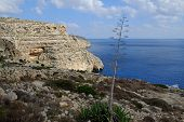 foto of grotto  - The Blue Grotto area of Malta, a number of small caves