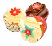 image of irresistible  - Chocolate and vanilla flavour decorated cupcakes isolated on a white background - JPG