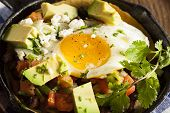 stock photo of cilantro  - Homemade Heuvos Rancheros with Avocado and Cilantro - JPG