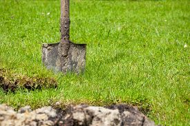 picture of loamy  - Dirty spade stuck in the soil - JPG