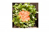 pic of tartar  - Salmon tartare with green valerian salad on square black plate isolated on white background - JPG