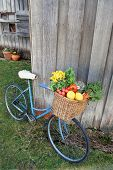 Bicycle And Vegetables
