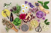 Natural herbal medicine with fresh herbs and flowers, aromatherapy essential oil, mortar with pestle poster