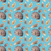Pattern Of A Large Number Of Sea Shells On A Blue Background. Beautiful Seamless Pattern Made Of She poster