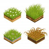 Grass And Soil Layers Isometric Vector Set. Different Fresh Green Grass With Fallen Leaves, Daisies. poster