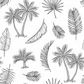 Palm Tree Seamless Background. Tropical Coconut Palm, Exotic Island. Vintage Hand Drawing Abstract F poster