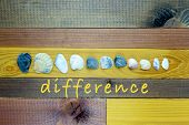 Seashells Of Various Sizes And Shapes In Center - Concept Of The Union Of Differences - On The Woode poster
