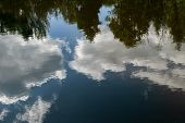 Reflection Of Clouds And Trees In The Water Of The River. The Sky Is Blue. Clouds Are White. Trees A poster