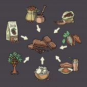 Super Food Chocolate Collection For Infographic. Pod, Beans, Sugar, Cocoa Butter, Chocolate, Cacao D poster
