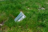 Discarded Plastic Cup In Green Grass In Summer poster