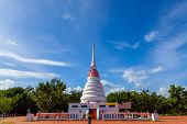 Waterfront Pagoda In The Mangrove Forest. Old Pagoda At The Mangrove Forest In Rayong Province. poster