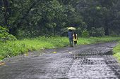 Romantic Couple With One Umbrella Walking And Faded Away In Nature, Conceptual Stock Image Of Rainy  poster