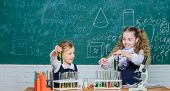 Girls On School Chemistry Lesson. Kids Busy With Experiment. School Education. School Laboratory Par poster