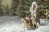 stock photo of arctic landscape  - Fashion portrait of beautiful woman with three dogs - JPG