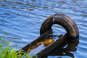 Old Tyre in the River