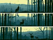 Horizontal Banners Of Wild Animals In Hills Wood. poster