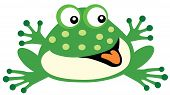 picture of baby frog  - cartoon frog for babies and little kids - JPG