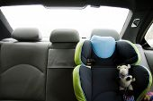 image of seatbelt  - transport chair and child safety in the car - JPG