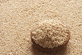 stock photo of urad  - Urad Dal - A lentil commonly used in Indian recipes